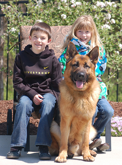 Family protection dogs, guard dogs for children